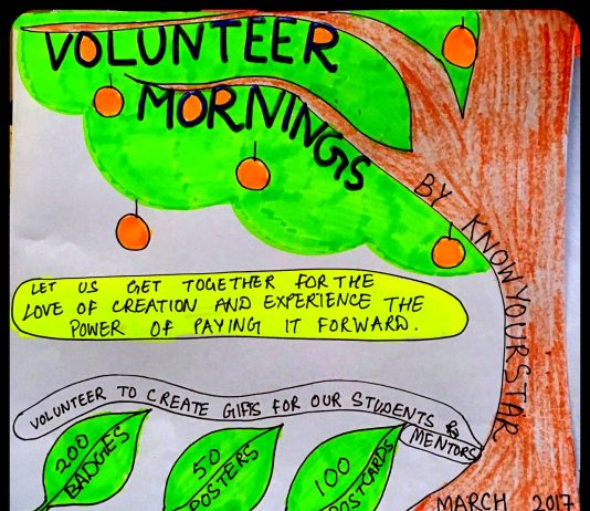 Volunteer Mornings Banner